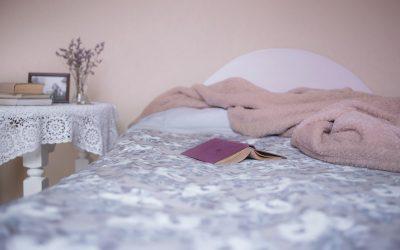 5 domande che ti devi fare per capire se il tuo albergo è al sicuro dalla Cimice dei letti